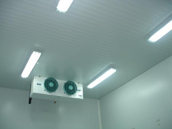 camaras-frias-cámara-de-refrigeración-alcar-2-cámara-de-refrigeración-2